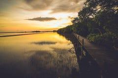 Insieme di Sun Fotografie Stock
