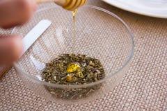 Insieme di tè di infusione del Camomilla-dragoncello Fotografie Stock