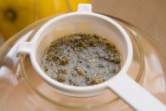 Insieme di tè di infusione del Camomilla-dragoncello Immagini Stock