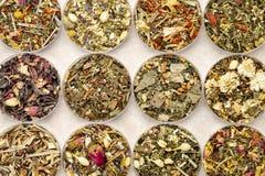 Insieme di tè di erbe di miscela Immagini Stock Libere da Diritti