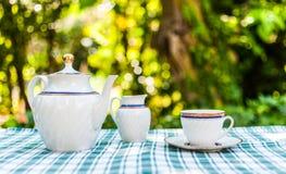 Insieme di tè nel giardino Immagini Stock Libere da Diritti