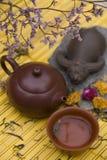 Insieme di tè orientale fotografia stock