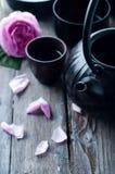 Insieme di tè asiatico Immagini Stock Libere da Diritti