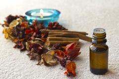 Insieme di terapia dell'aroma Immagini Stock Libere da Diritti