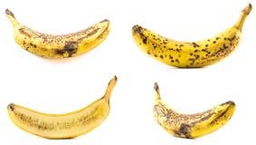 Insieme di vecchie banane su un fondo bianco Fotografia Stock Libera da Diritti