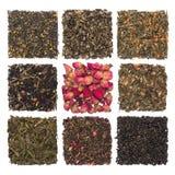 Insieme di verde di erbe e floreale asciutto del tè, il nero, tè della composizione isolato su bianco Fotografie Stock Libere da Diritti