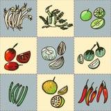 Insieme di verdure asiatico disegnato a mano di vettore Immagine Stock