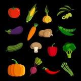 Insieme di verdure moderno dell'icona di vettore Fotografie Stock Libere da Diritti
