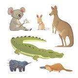 Insieme di vettore degli animali australiani del fumetto isolati La fauna dell'illustrazione dell'Australia Immagine Stock