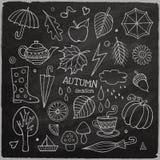 Insieme di vettore degli elementi disegnati a mano differenti di autunno Fotografia Stock