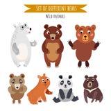 Insieme di vettore degli orsi differenti isolati su bianco illustrazione di stock
