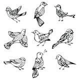 Insieme di vettore degli uccelli d'annata Fotografia Stock Libera da Diritti