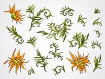 Insieme di vettore dei fiori, dei rami e delle foglie disegnati a mano Immagini Stock Libere da Diritti