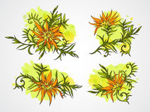 Insieme di vettore dei fiori, dei rami e delle foglie disegnati a mano con l'elemento strutturato dell'acquerello Fotografia Stock Libera da Diritti