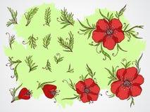 Insieme di vettore dei fiori, dei rami e delle foglie disegnati a mano su fondo strutturato Fotografia Stock