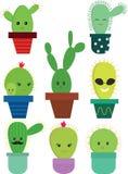 Insieme di vettore del cactus Immagine Stock