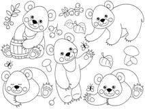 Insieme di vettore del fumetto sveglio Forest Bears Fotografie Stock Libere da Diritti