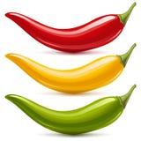 Insieme di vettore del pepe di peperoncini rossi caldi Fotografia Stock