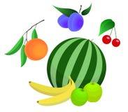 Insieme di vettore della frutta Fotografia Stock