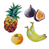 Insieme di vettore della frutta colorata del gesso Immagini Stock