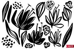 Insieme di vettore delle erbe di disegno dell'inchiostro, fiori, illustrazione botanica artistica monocromatica, elementi floreal royalty illustrazione gratis