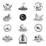 Insieme di vettore delle etichette, dei distintivi e della progettazione disegnata a mano Immagini Stock