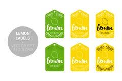 Insieme di vettore delle etichette di Eco della frutta del limone nei colori verdi e gialli illustrazione vettoriale