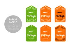 Insieme di vettore delle etichette di Eco della frutta della papaia nei colori verdi e arancio illustrazione vettoriale