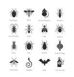 Insieme di vettore delle icone con gli insetti per la società di controllo dei parassiti Fotografia Stock