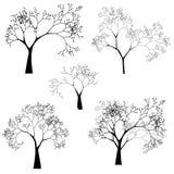 Insieme di vettore delle siluette dell'albero Immagine Stock Libera da Diritti
