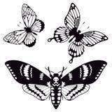 Insieme di vettore delle siluette della farfalla Fotografia Stock Libera da Diritti