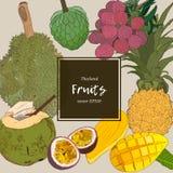 insieme di vettore di schizzo di Tailandese-frutti illustrazione di stock
