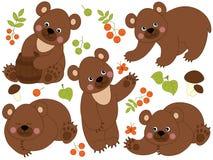 Insieme di vettore di Forest Brown Bears sveglio Fotografia Stock Libera da Diritti