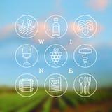 Insieme di vino ed icone ed emblemi di vinificazione Immagini Stock