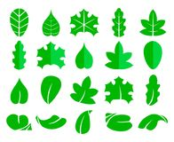 Insieme differente della foglia Icone di vettore Isolato degli elementi di eco di progettazione su fondo bianco Albero verde dell Immagini Stock
