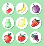 Insieme disegnato a mano dell'acquerello dei frutti delle icone Immagini Stock Libere da Diritti