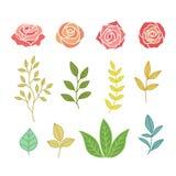 Insieme disegnato a mano di botanica dei fiori e delle foglie Fotografia Stock Libera da Diritti
