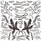 Insieme disegnato a mano di floreale e di flourishes Fotografia Stock Libera da Diritti