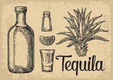 Insieme disegnato a mano di schizzo dei cocktail alcolici Illustrazione di vettore Immagine Stock Libera da Diritti
