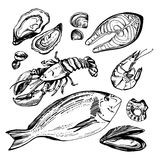 Insieme disegnato a mano di schizzo di frutti di mare Illustrazione di vettore Fotografia Stock Libera da Diritti