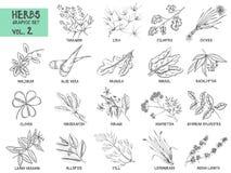Insieme disegnato a mano di vettore delle erbe e delle spezie d'annata illustrazione di stock