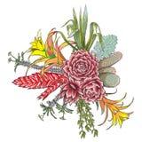 Insieme esotico del mazzo Fiori Raccolta floreale con il vario piano illustrazione di stock