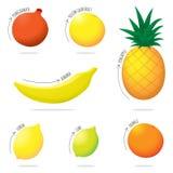 Insieme esotico dell'illustrazione della frutta Fotografia Stock