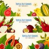 Insieme esotico dell'insegna della frutta tropicale per progettazione dell'alimento illustrazione di stock