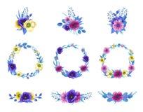 Insieme floreale del fiore dell'acquerello Fotografie Stock Libere da Diritti