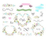 Insieme floreale del grafico di nozze con le corone Immagini Stock