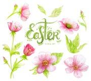 Insieme floreale dell'acquerello con i fiori e le lettere rosa del disegno della mano (parola Pasqua) Immagini Stock Libere da Diritti