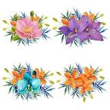 Insieme floreale dell'acquerello per la vostra progettazione illustrazione vettoriale