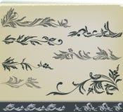 Insieme floreale di disegno della decorazione dell'annata Immagini Stock