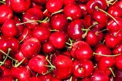 Insieme fresco delle ciliege rosse Immagine Stock